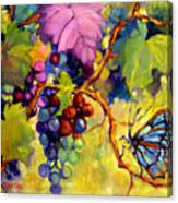 Butterfly And Grapes Canvas Print