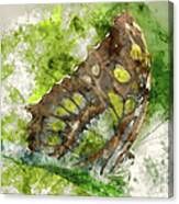 Butterfly Close Up Digital Watercolor On Photograph Canvas Print