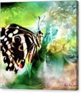 Butterfly Daydream Canvas Print