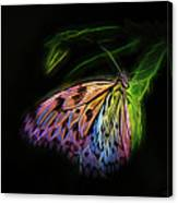 Butterfly Fantasy 1a Canvas Print