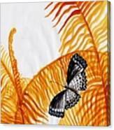 Butterfly Fern Canvas Print