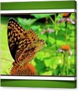 Butterfly For Earth Day Canvas Print