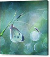 Butterfly Imagination Canvas Print