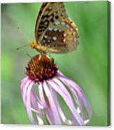 Butterfly In The Wind Canvas Print