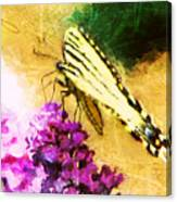 Butterfly Journey Canvas Print