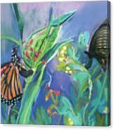 Butterfly Mammas Canvas Print