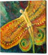 Butterfly Man Canvas Print