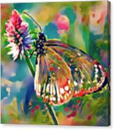 Butterfly Of Paradise 1 Canvas Print