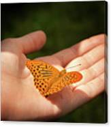 Butterfly On A Childs Hand Canvas Print