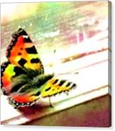 Butterfly On The Window Frame Watercolor Canvas Print