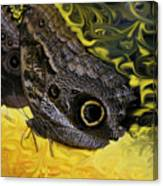 Butterfly Reflections Canvas Print