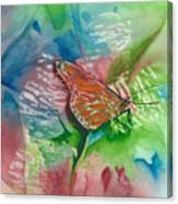 Butterfly W Print Canvas Print