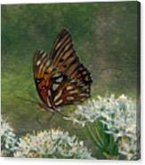 Butterfly Waters Canvas Print