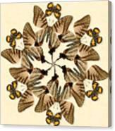 Butterfly Wheel Dance Canvas Print