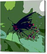 Butterfly Work Number Ten Canvas Print