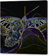 Butterfly Work Rws Number 6 Canvas Print