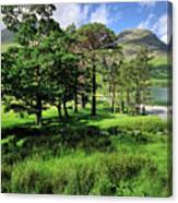 Buttermere Pines Canvas Print