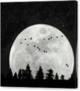 By The Light Of The Silvery Moon - Birds  Canvas Print