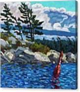 C194 Canvas Print