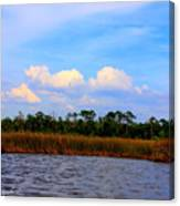 Cabbage Palms And Salt Marsh Grasses Of The Waccasassa Preserve Canvas Print