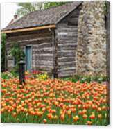 Cabin In The Tulips Canvas Print
