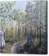 Cabin Road Canvas Print