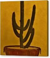 Cabo Cactus Canvas Print