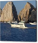 Cabo San Lucas - Sport Fishing Canvas Print