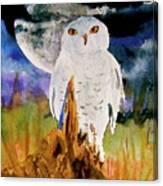 Cacciatore Di Notte Canvas Print