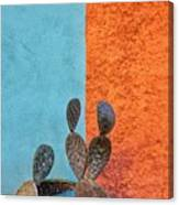 Cactus And Colorful Wall Canvas Print