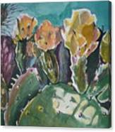 Cactus Blossoms In Desert Canvas Print