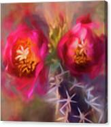 Cactus Flower 07-003 Canvas Print