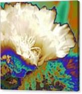 Cactus Moon Flower Canvas Print