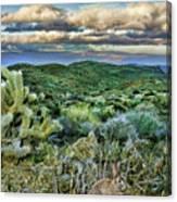 Cactus Rabbit Canvas Print