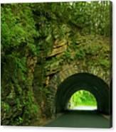 Cades Cove Tunnel Canvas Print