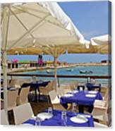 Cafe In White And Purple Canvas Print