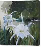 Cahaba Lilies Canvas Print