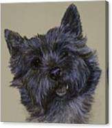 Cairn Terrier Canvas Print