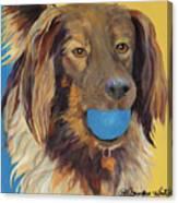 Caleigh Canvas Print