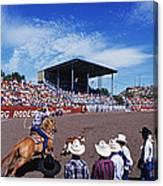 Calf Roping Event At Ellensburg Rodeo Canvas Print