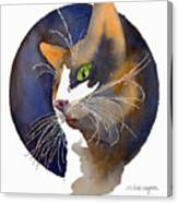Calico Canvas Print