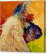 Calico Llama Canvas Print