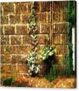 Calico Wall Canvas Print