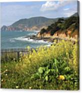 California Coast With Wildflowers And Fence Canvas Print