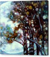 California Cypress Canvas Print