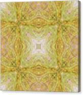 California Spring Oscillation Field Canvas Print