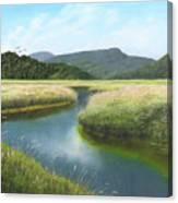 California Wetlands 2 Canvas Print