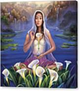 Calla Lily - Be Still Canvas Print