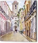 Calle Fuente Alhabia Canvas Print