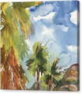 Calm Palms Canvas Print